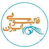 کانال قالیشویی ایران