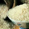 کانال برنج فروشی شمال