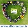 کانال شرکت گردشگری البرز من