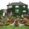 کانال فروش گل و گیاه زینتی و معماری فضای سبز