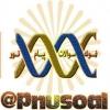کانال خبرگزاری و نمونه سوالات پیام نور
