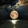 کانال مهتاب شبی