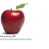 کانال پرسش و پاسخ مددکاری- روانشناسی- اطلاعات عمومی-دینی