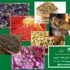 کانال گیاه دارویی درسا سبز