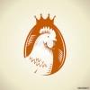کانال تخم مرغ، قیمت و مطالب علمی طیور
