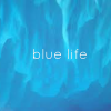 کانال blue life