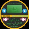 کانال گلناریان شریف
