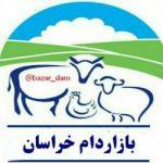 کانال بازاردام خراسان (مشهد)