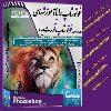 کانال تلگرام مدرسه فوتوشاپ