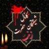 کانال شیفتگان حضرت زینب (س)