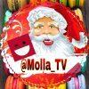 کانال ملا تی وی