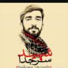 کانال شهید حججی
