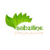 کانال فروشگاه اینترنتی سبزی لاین