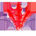 پیج اینستاگرام زعفرانیک